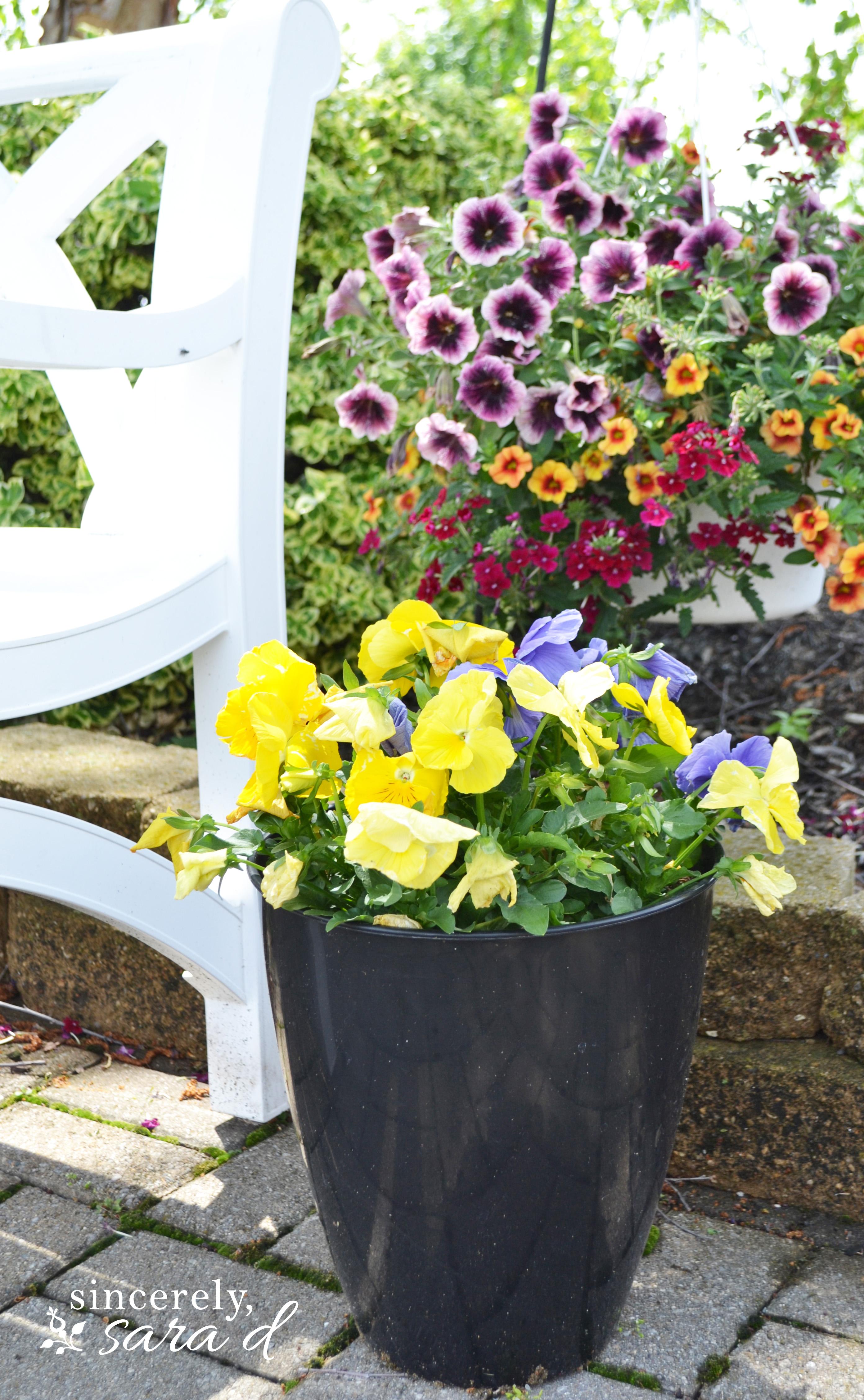 Image Of Beautiful Flower Pot Wallpapersjpg
