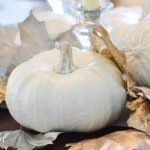 Fall Decor – Painted Gourds & Leaves