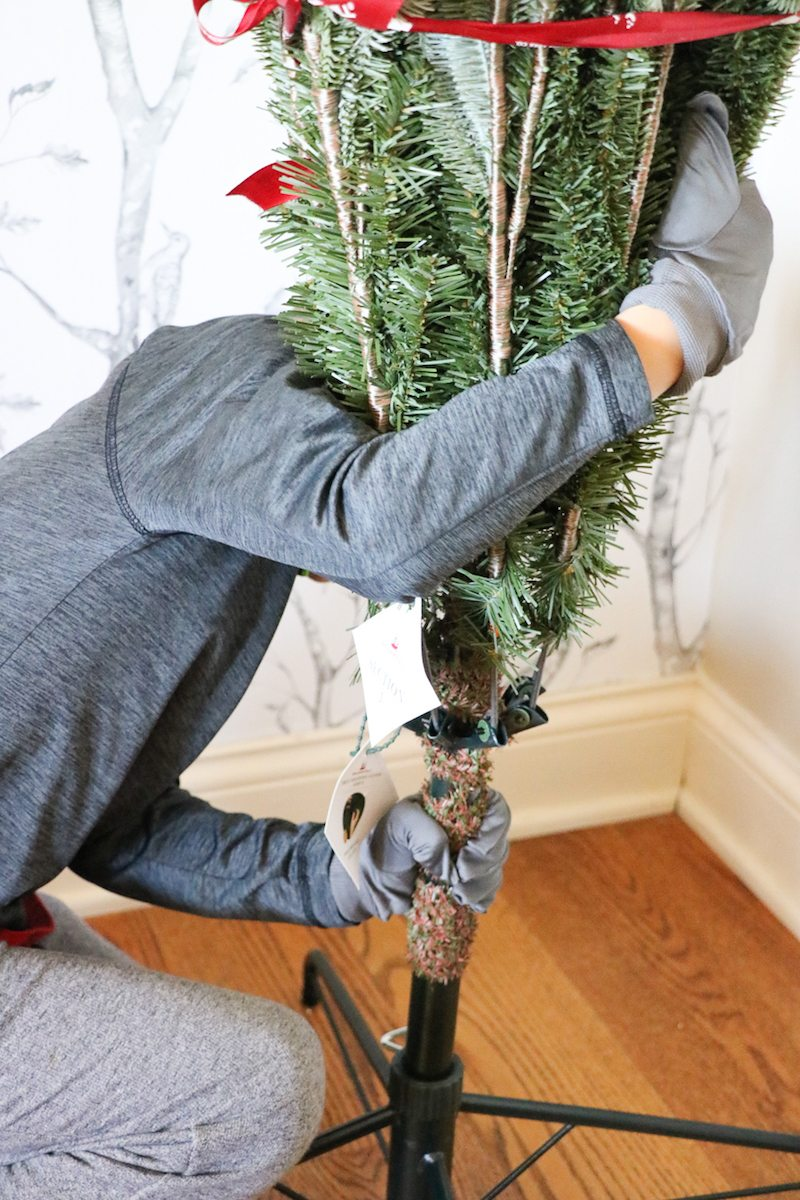 balsam-hill-christmas-tree-set-up